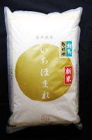 【令和元年産・新米】-福井県産- 新ブランド米・コシヒカリを開発した福井の次世代の米 【特別栽培米】  『いちほまれ』  5kg